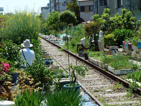 大阪臨港線の廃線菜園が消えた。...